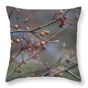 The Peaceful Fruit Of Nature Throw Pillow
