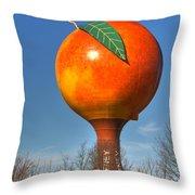 The Peach Throw Pillow