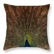 The Peacock 2 Throw Pillow