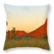The Peak And Cardon Cacti In The Sunset In San Carlos-sonora Throw Pillow