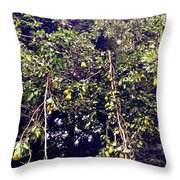 The Pear Tree Throw Pillow by Garren Zanker