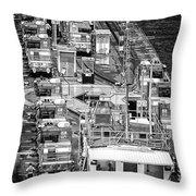 The Pecking Order Monochrome Throw Pillow
