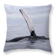 The Pectoral Fin Of A Humpback Throw Pillow