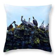 The Pelican Dance Throw Pillow