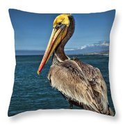The Pelican Of Oceanside Pier Throw Pillow