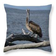 The Pelican Pose Throw Pillow
