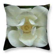 The Perfect Magnolia Bloom Throw Pillow