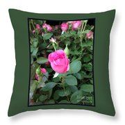The Perfect Pink Rose 2 Throw Pillow
