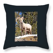 The Perfect Pose Throw Pillow
