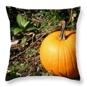 The Perfect Pumpkin In The Patch Throw Pillow