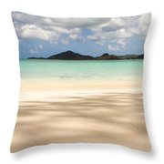 The Perfect Shade Throw Pillow