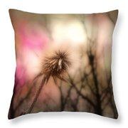 The Pink Light Throw Pillow