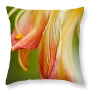 The Poetic Pose Throw Pillow