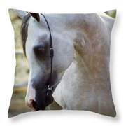 The Polish Arabian Horse Throw Pillow