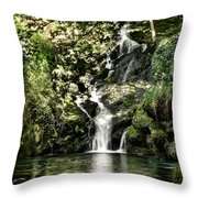 The Pond And The Forest Waterfall Throw Pillow