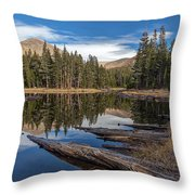 The Pond At Dana Meadow Throw Pillow