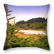 The Pond In The Forest Throw Pillow