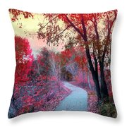 The Pondering Path Throw Pillow