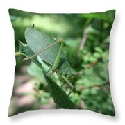 The Pondering Soul Throw Pillow