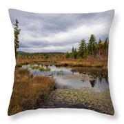 The Ponds Near Raquette Lake Throw Pillow