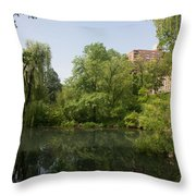 The Pool Central Park Throw Pillow