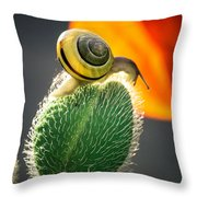 The Poppy And The Snail Throw Pillow