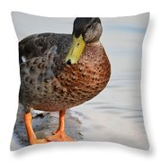 The Posing Duck Throw Pillow