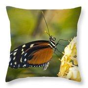 The Postman Butterfly  Throw Pillow