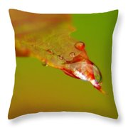The Power Of One Small Drop  Throw Pillow