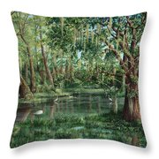 The Preacher And His Flock Throw Pillow