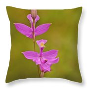The Prettiest Pink Throw Pillow