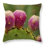 The Prickly Pear  Throw Pillow