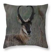The Pronghorn 2 Dry Brushed Throw Pillow