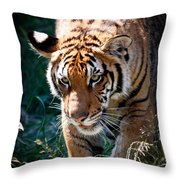 Prowling Tiger Throw Pillow