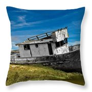 The Pt. Reyes Muted Throw Pillow