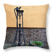 The Pump At St Goar Am Rhein Throw Pillow