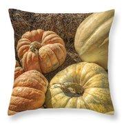 The Pumpkins Of Autumn Throw Pillow