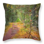 The Quiet Path Throw Pillow