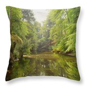 The Quiet River Throw Pillow