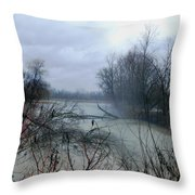 The Rains Came Throw Pillow