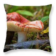 The Red Cap Throw Pillow