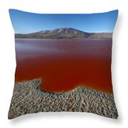 The Red Lagoon Throw Pillow