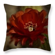 The Red Torch  Throw Pillow