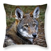 The Red Wolf Throw Pillow