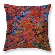 The Reds Of Autumn  Throw Pillow