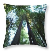 The Redwood Giants Throw Pillow
