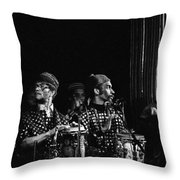 The Reed Section 2 Throw Pillow