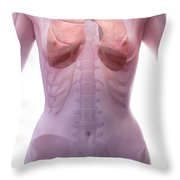 The Respiratory System Female Throw Pillow