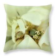The Reveal Throw Pillow
