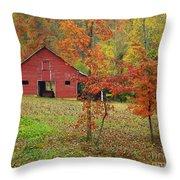 The Rice Barn Throw Pillow